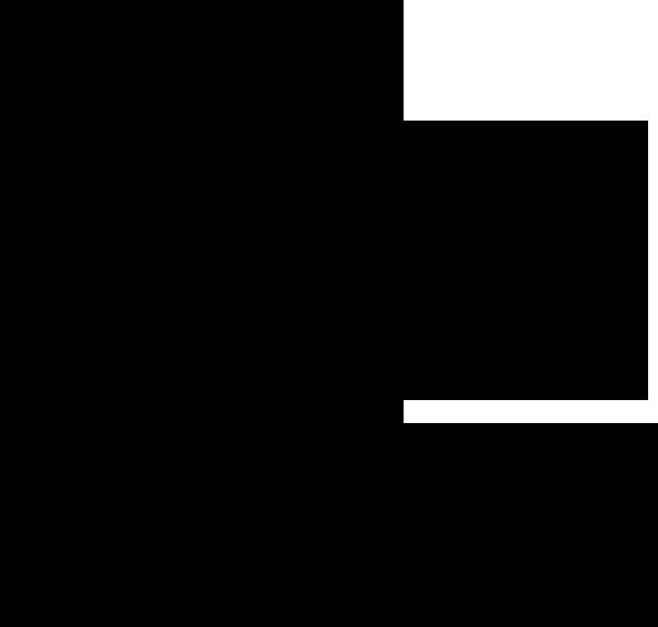 Bonfyre